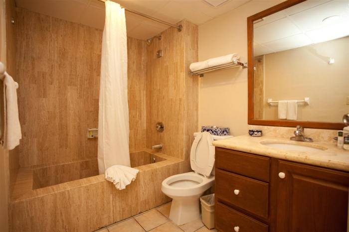 Villa Del Palmar Studio Suite Bathroom