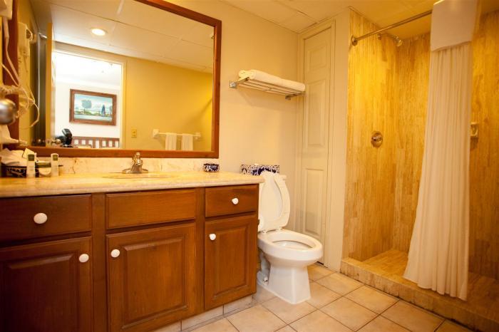 Villa Del Palmar 2 Bedroom Second Bathroom