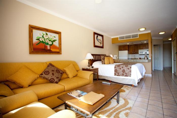 Villa Del Palmar Studio Suite Living Area